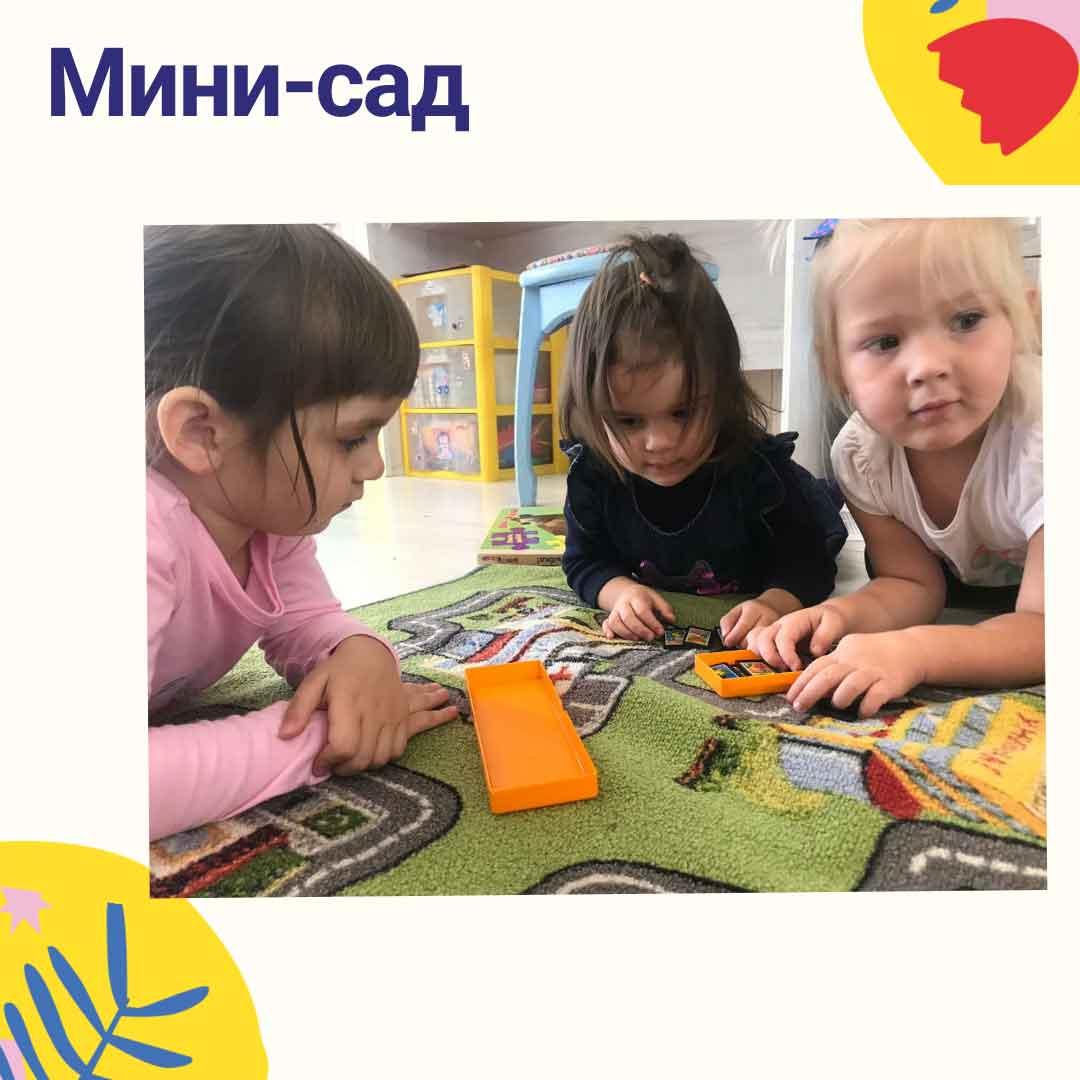 Мини-сад